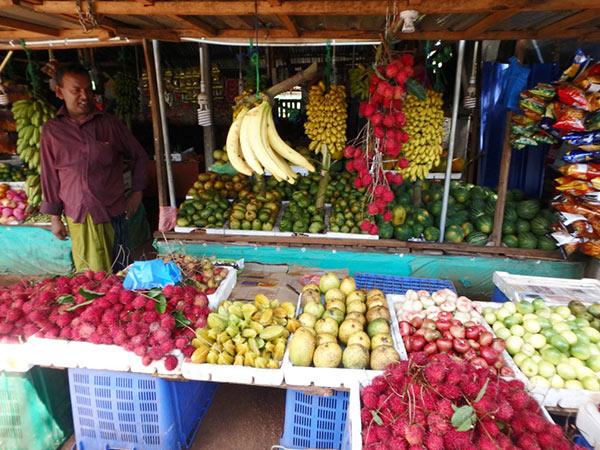 ダンブッラの果物屋さんにはランブータンやスターフルーツ、皮が青いマンゴー、小さなスイカ、パパイヤ等がたくさん並んでいました