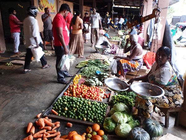 様々な種類の野菜が並べられたトリンコマリーの青果市場。見たことのない野菜もあって興味津々