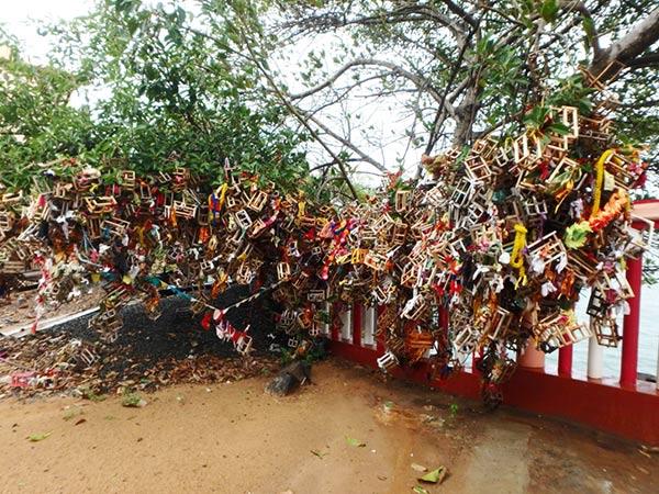 寺院の裏にある木には、布に包まれたコインが付けられた鳥かごの様な木箱がたくさん結び付けられていました。絵馬の様なものなのでしょうか