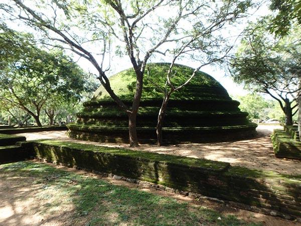 緑豊かなポロンナルワの遺跡地区に、自然に溶け込むように残っている苔むしたドーム型の遺跡