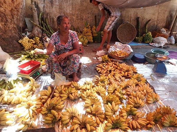 ちょっと酸味がある小さなバナナ。この国には色々な種類のバナナがあるようなので、食べ比べが楽しみです♪