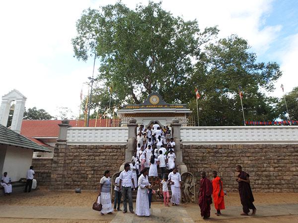 仏陀はインド、ブッタガヤの菩提樹の下で悟りを開きました。その菩提樹の分け木を運んで植樹したものと言われているスリー・マハー菩提樹。塀に囲まれていて細い枝の部分しか見ることが出来ませんでしたが、樹齢はなんと2000年なのだそうで折れそうな枝は黄金の細い柱で支えられていました