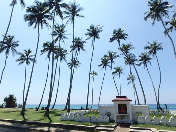 スリランカ南部の海岸線を西から東へ大移動。エッラからゴールまでの道は、山から海へと景色がどんどん変わるので6時間の移動もあっという間でした♪