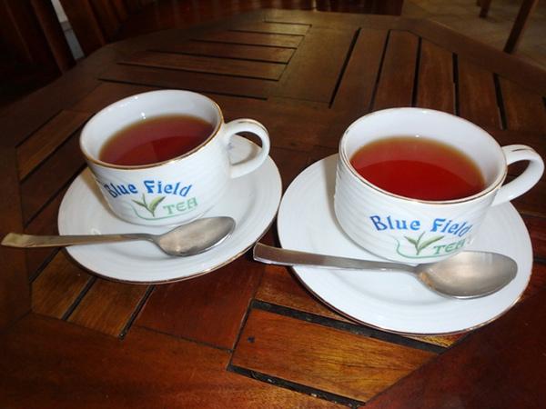 ブルー・フィールド・ティー・ガーデンズの工場に併設されている建物の1階には売店があり、様々な種類の紅茶が販売されています。入口から入ってすぐのラウンジでは、無料で紅茶の試飲を楽しむことが出来ます。