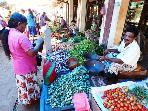 八百屋の威勢のいい掛け声が飛び交うマータラの青果市場。首都コロンボから続く鉄道の終着駅があるこの町は、バスターミナルも大きく庶民の活気が溢れていました