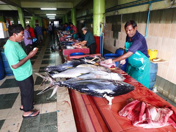 マレ最大の見所は魚市場!! 大きな魚が次々とさばかれていく様子は一見の価値あり