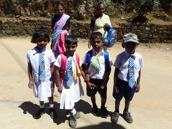 お茶畑の中を歩いて学校から帰っていた子供たち。こんな美しい景色を見ながら学校に通えるなんて、とても羨ましいです
