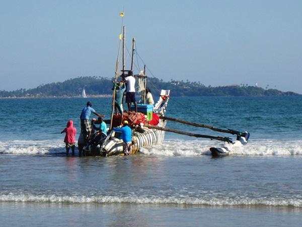 ウェリガマの砂浜から海へと出て行く漁船。エビのような形をした大きな船を男性たちが丸木を使って海まで運び、エンジンを搭載して沖へと出て行きました。船の模様はなぜかシマウマ柄!! 「3時間で戻って来るから一緒に行こう!」と誘ってもらって、ぜひ行ってみたかったのですが暗くなってしまうので断念しました