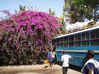ethiopia13