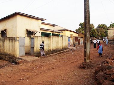 guinea26