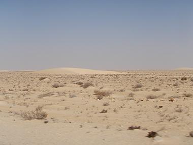mauritania114