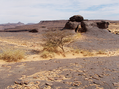 mauritania34