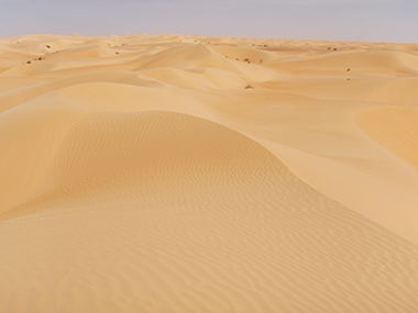 mauritania62