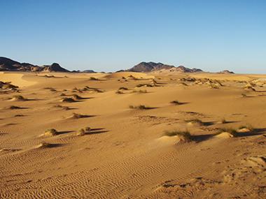 mauritania98