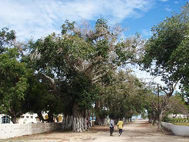 mozambique34