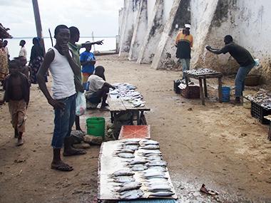 mozambique41