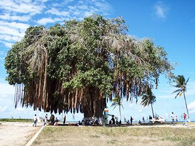 mozambique54