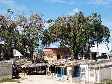 mozambique55