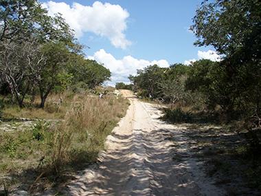 mozambique6