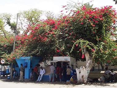 ethiopia129