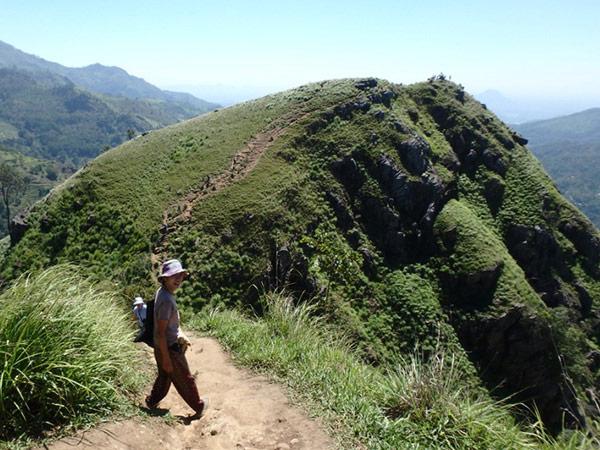 美しい景色を見ながら、リトルアダムスピーク Little Adam's Peak へハイキング。途中、茶畑の中でお茶摘みをしている振りをして「フォトフォト」(有料)と声を掛けてくるおばちゃんや、サルを連れたヘビ使いに遭遇。サルの写真を撮りまくって、お金を払わずに立ち去ろうとした中国人の女性が「10ドル払え!」と言われていました。怖い怖い