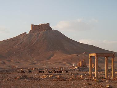 syria166