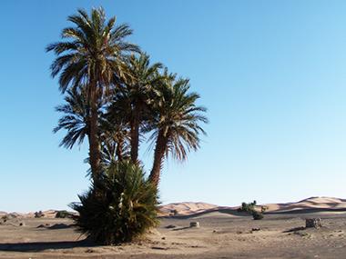 morocco150