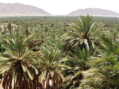 morocco161