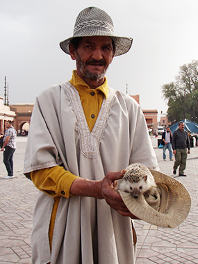 morocco75