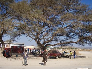 namibia80