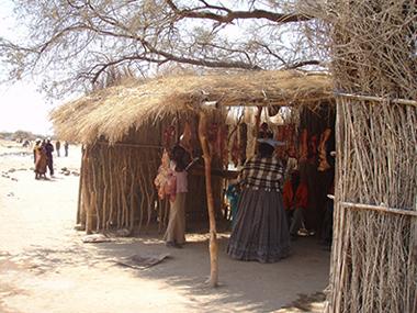 namibia85