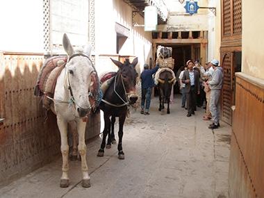 morocco2-152