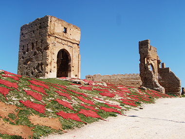 morocco2-175