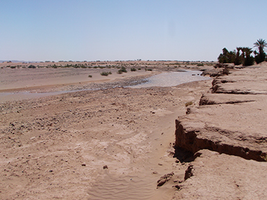 morocco2-226