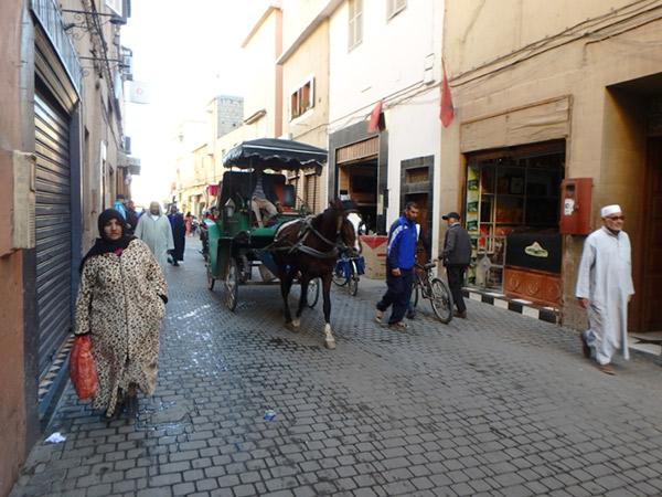 観光客はもちろん、地元の人の足としても大活躍のクチ(馬車)