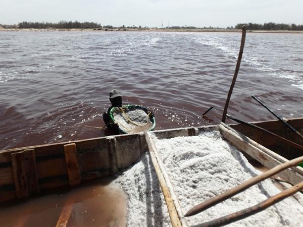 ザルにかき集めた大粒の塩をボートにバサッ。ボートが一杯になると、塩の量は1トンになるのだそう