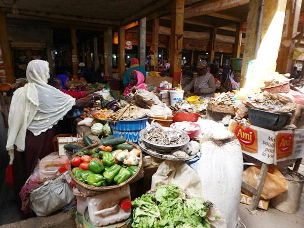 セネガルは周辺の国々よりも野菜の種類が豊富で、野菜市場も活気があります