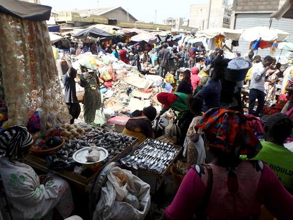 ダカールの中心にある庶民的なティレン市場 Marché Tilène。午前中は通りの真ん中で野菜や魚も売られていて大変な賑わい。市場の中の道路に積み上げられているゴミの量にはビックリしました・・・