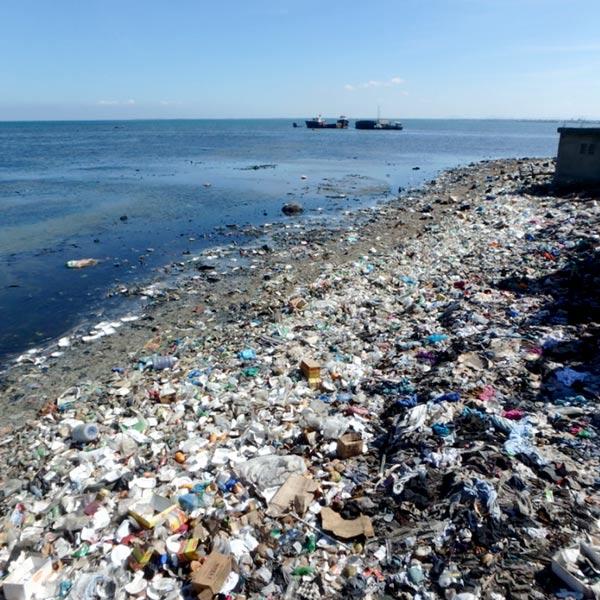 ゴミだらけの海岸。大きな豚がゴミをあさっていることも・・・