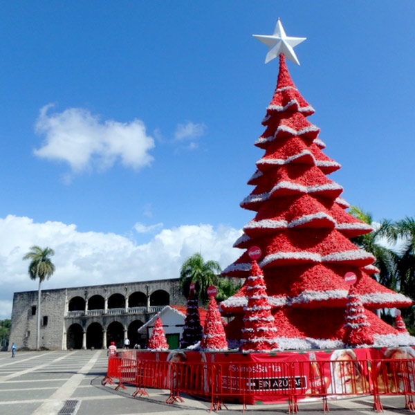旧市街の中心にあるスペイン広場に飾られていたクリスマスツリーと、コロンブスの子孫が3代にわたって住んでいたという歴史的建造物アルカサル Alcazar de Colón