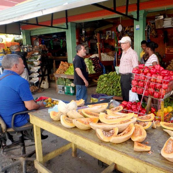 サント・ドミンゴの八百屋さん。アロエやサボテンも売られていました