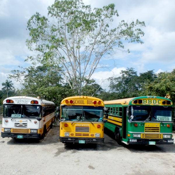 アメリカのスクールバスを再利用しているという、ベリーズのカラフルなバス