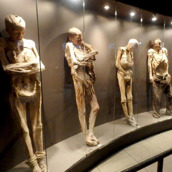 ミイラ博物館 Museo de las Momias。グアナファトの鉱物質な土壌と乾燥した気候が埋葬体をミイラ化させるのだそうで、赤ちゃんから老人まで様々なミイラが展示されています。なぜかミイラたちの表情は苦しそうで、それがとても衝撃的でした。入場料85ペソ(約500円)、写真撮影をする場合は更に30ペソ(約170円)必要