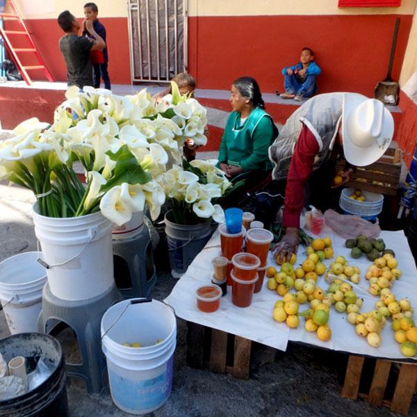 美しいカラーとグァバを売っている露店。グァバは皮ごと食べられてとても美味♪