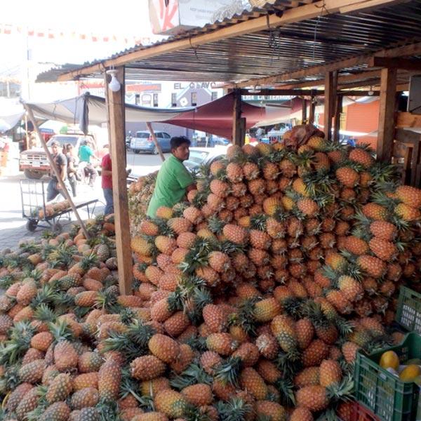 大量のパイナップル!グアテマラは果物が安くて美味♪ 大きなパパイヤが1つ5ケツァール(約70円)で売られていてビックリしました