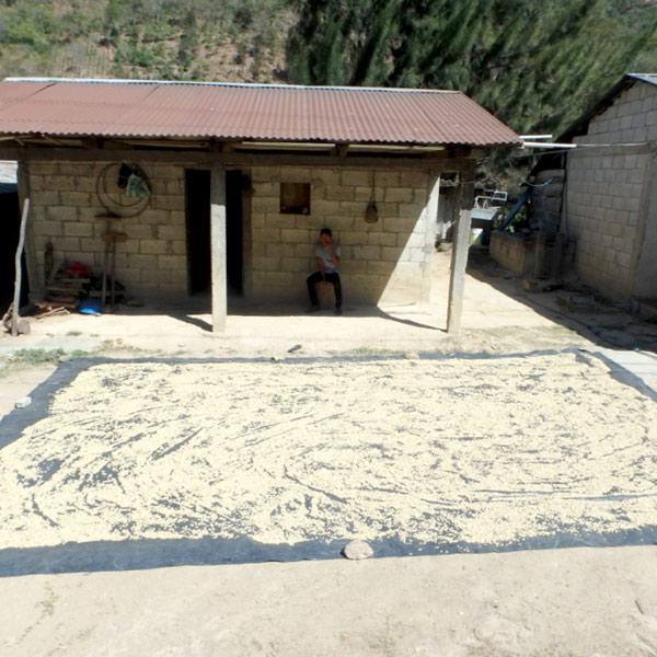 ウエウエテナンゴ県はコーヒーの産地のようで、家の庭先や屋上にコーヒー豆がたくさん干してありました