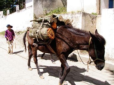 guatemala143