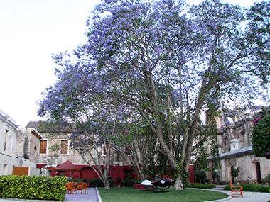 guatemala265
