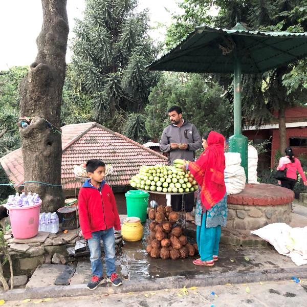 kathmandu6005