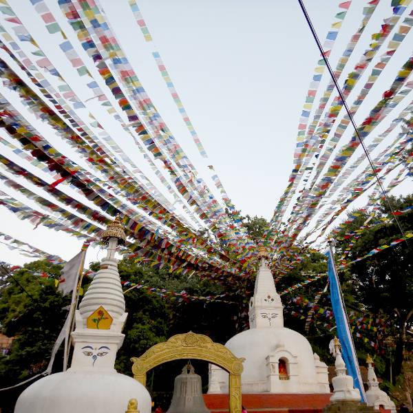 kathmandu6009